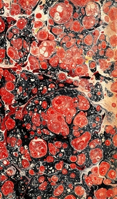red, light orange and black spotted marbled endpaper