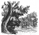 country gate engraving