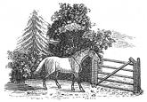 horse and gate engraving
