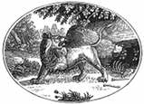 lion engraving