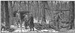 winter, sugar bush engraving